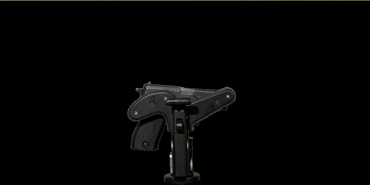 sig_225_1070_gun_rack